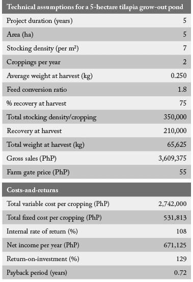 tilapia financial indicators