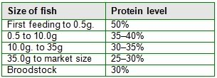 tilapia protein requirement