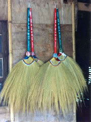 Tiger Grass Farming And Broom Making Production