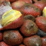 Paratungon: An underutilized fruit with great economic potential 5
