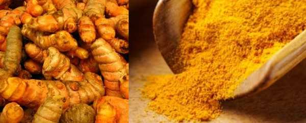 Turmeric: Bringing more color to healthier living 5