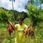 Pat the Carrot Queen: From a plain housewife to a profit-earning farmer