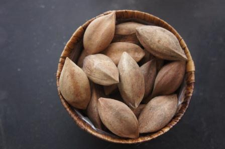 pili nut photo
