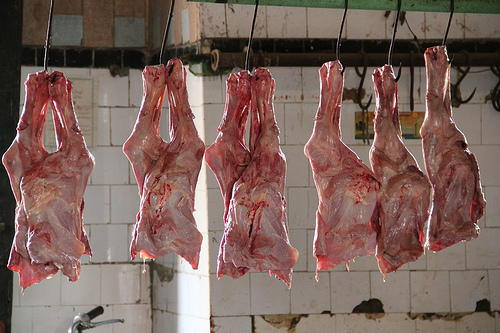 halal goat meat photo