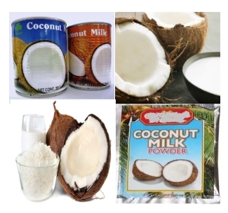 How to Process Coconut Milk 1