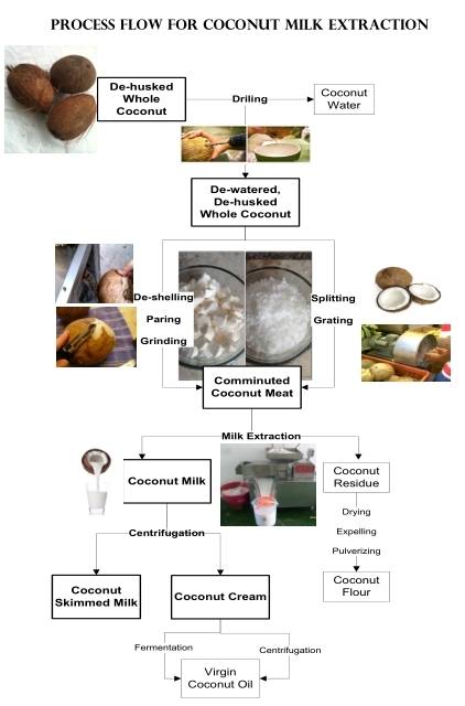How to Process Coconut Milk 2