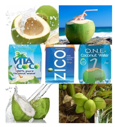 Coconut Processing Technology: Young Coconut Water 1