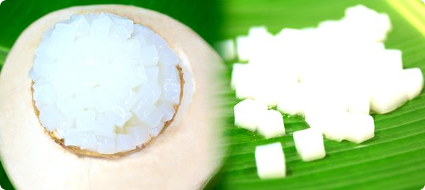 How to Make Nata de Coco from Coconut Milk 1