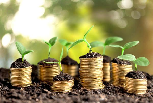 Organic Agriculture Financing Program 1