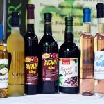 Fruit winemaking in Cagayan Valley gets much needed boost 5