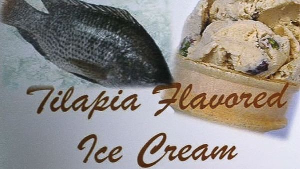 Introducing the tilapia ice cream 1