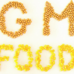 FDA will not require labeling of GM food as it has no difference from conventional food, is neither cancer-causing, and has been found safe to human