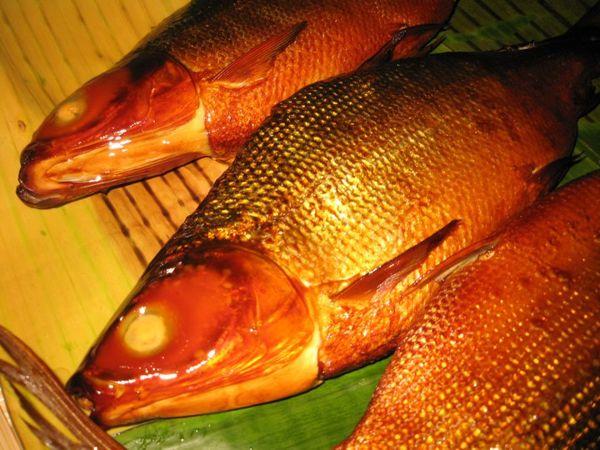 Smoked Bangus (Milkfish Processing Technology) 1