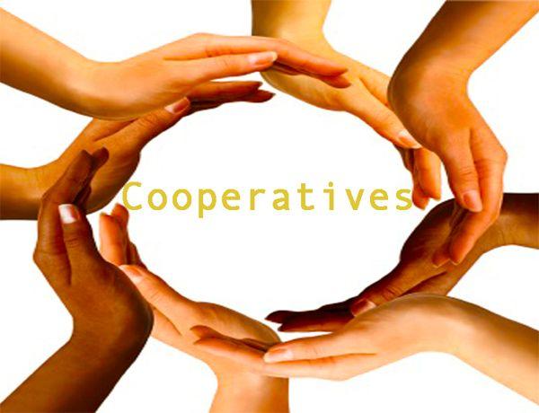 Credit Program for Cooperatives 1