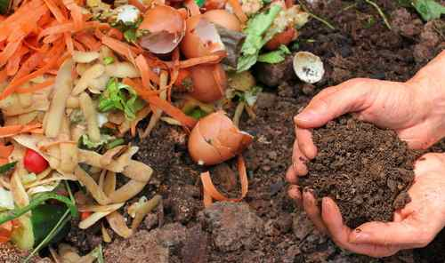 How to Make Compost in Three Weeks 1