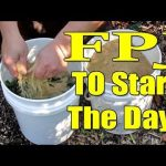 How to Make Fermented Plant Juice or FPJ