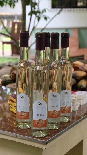 Cacao: Food of the gods turned into wine 1